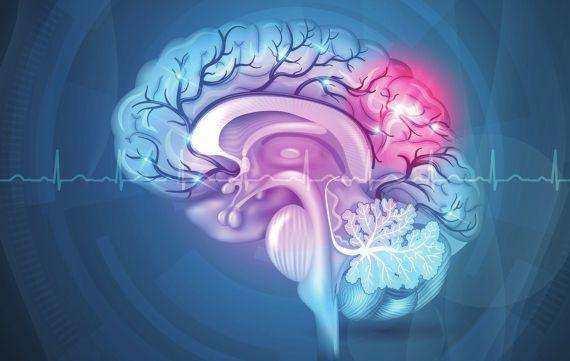 计算机通过监测人脑信号来模拟视觉感知