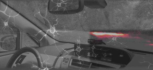 受蛲虫大脑启发构建新AI系统 利用更少的神经元控制车辆