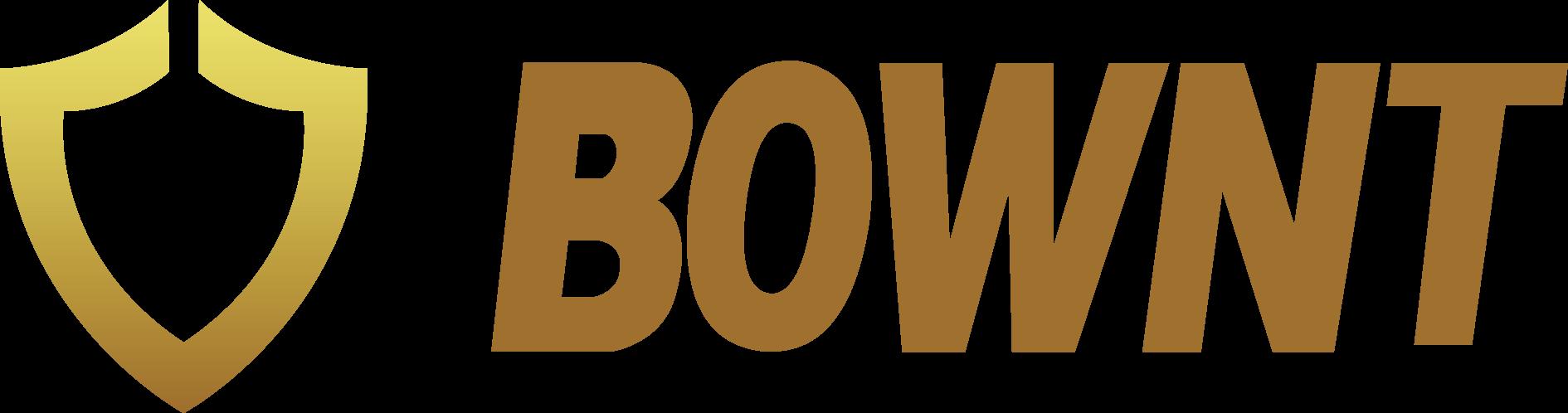 BOWNT BOS 自清洗过滤器有何技术优势
