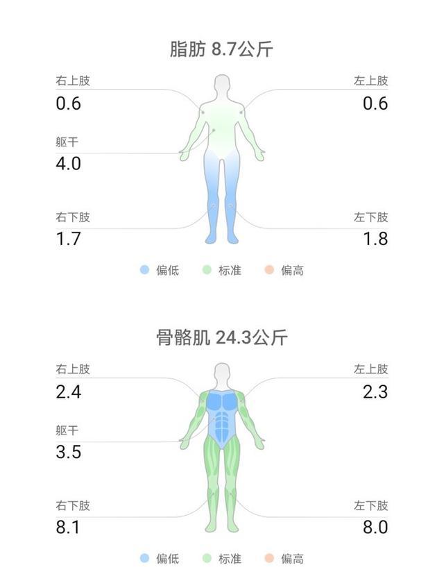 ai智能量体软件(ai人工智能app)