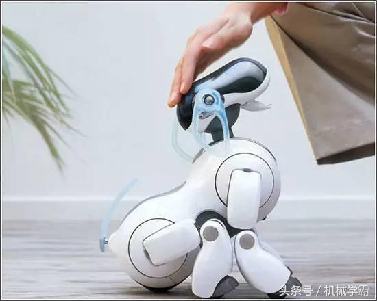 机器人与人工智能(机器人的未来发展前景)