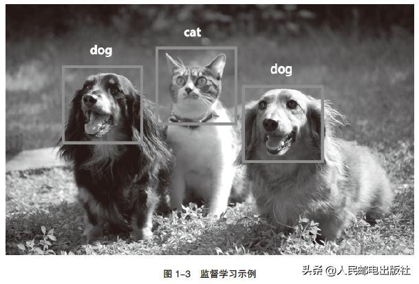 人工智能的机器学习的简单介绍