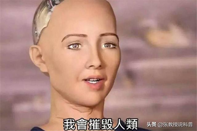 it人工智能机器人(人工智能陪伴机器人)
