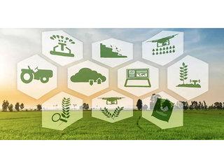 农业人工智能(人工智能招聘)